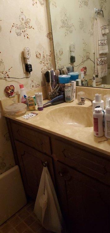 Powder Room - vanity.jpg